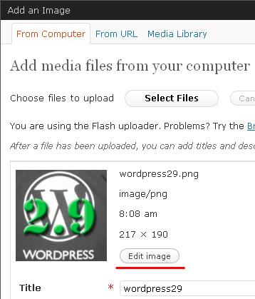 wp-edit-image1