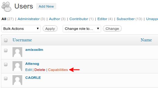 User Capabilities Editor link