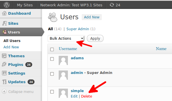 Multi site WordPress all users delete